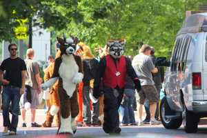 The convention features artists, animators, writers, costumers, puppeteers, and everyday fans who enjoy cartoon animals and their kin.