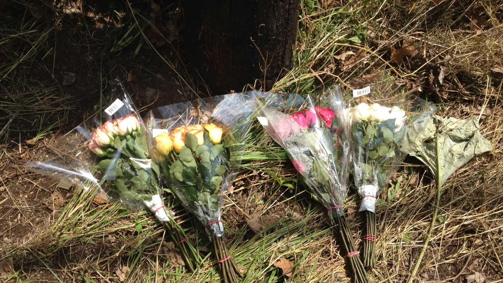 Collier Township crash scene