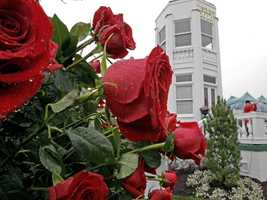 Kentucky: Ranks 20th139 deaths between 1959-2011