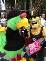 "Steely McBeam ""interviews"" The Pirate Parrot."