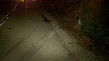 Route 40 inBrownsville