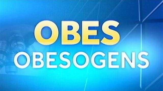 img-OBESOGENS