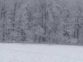 Snowfall in the mountains of Grantsville, MD - Submitted by Teresa Smith