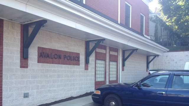 Avalon police car
