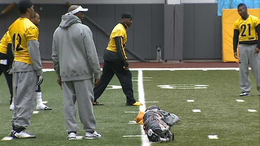 Steelers defensive backs