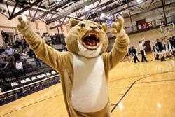#6 - Andrew once wore the Chatham University Cougar mascot and skated in between periods