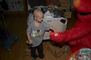 Elmo and Cookie Monster had fun playing with patients at Children's Hospital of Pittsburgh of UPMC.