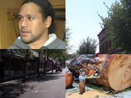 #1 - Mike grew up in the logging town of Roseburg, Oregon. The same hometown as Pittsburgh Steeler Troy Polamalu.