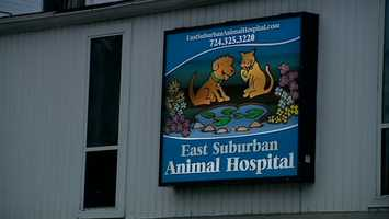 Police Chief Tom Seefeld said Lunsford called his wife to tell her that her dog had been shot and she should meet him at the East Suburban Animal Hospital, across the street from the bar.