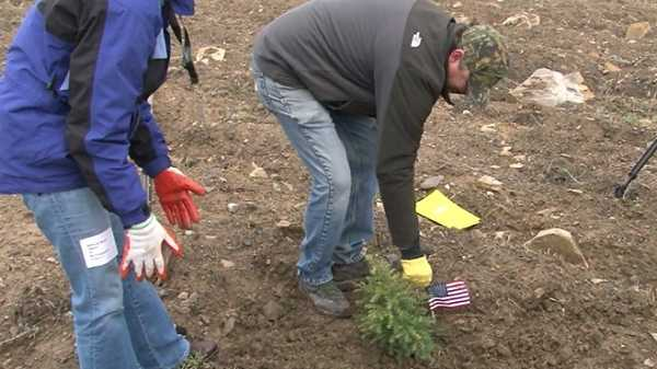 Flight 93 Memorial Tree Planting