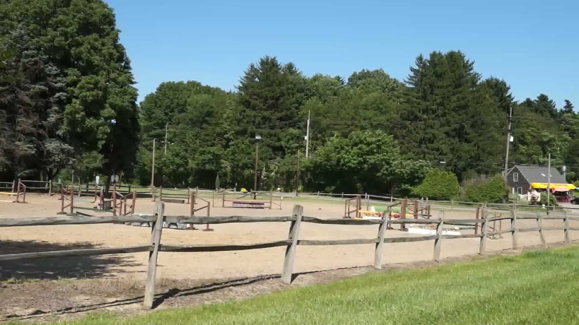 Equine Country Club 02
