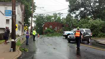 A downed tree closes Route 48 in Versailles