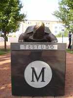 10. University of Maryland