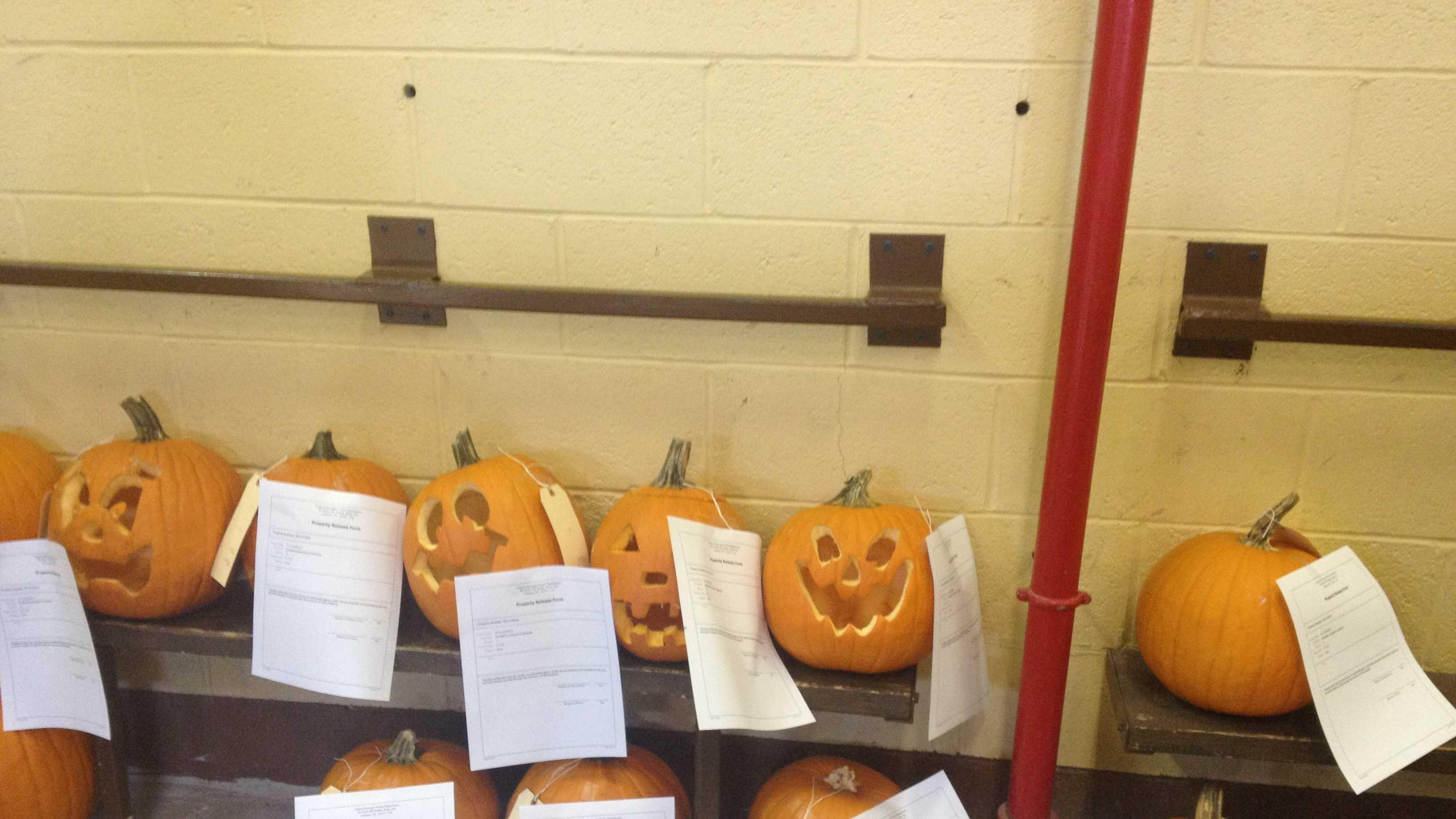 stolen pumpkins 01