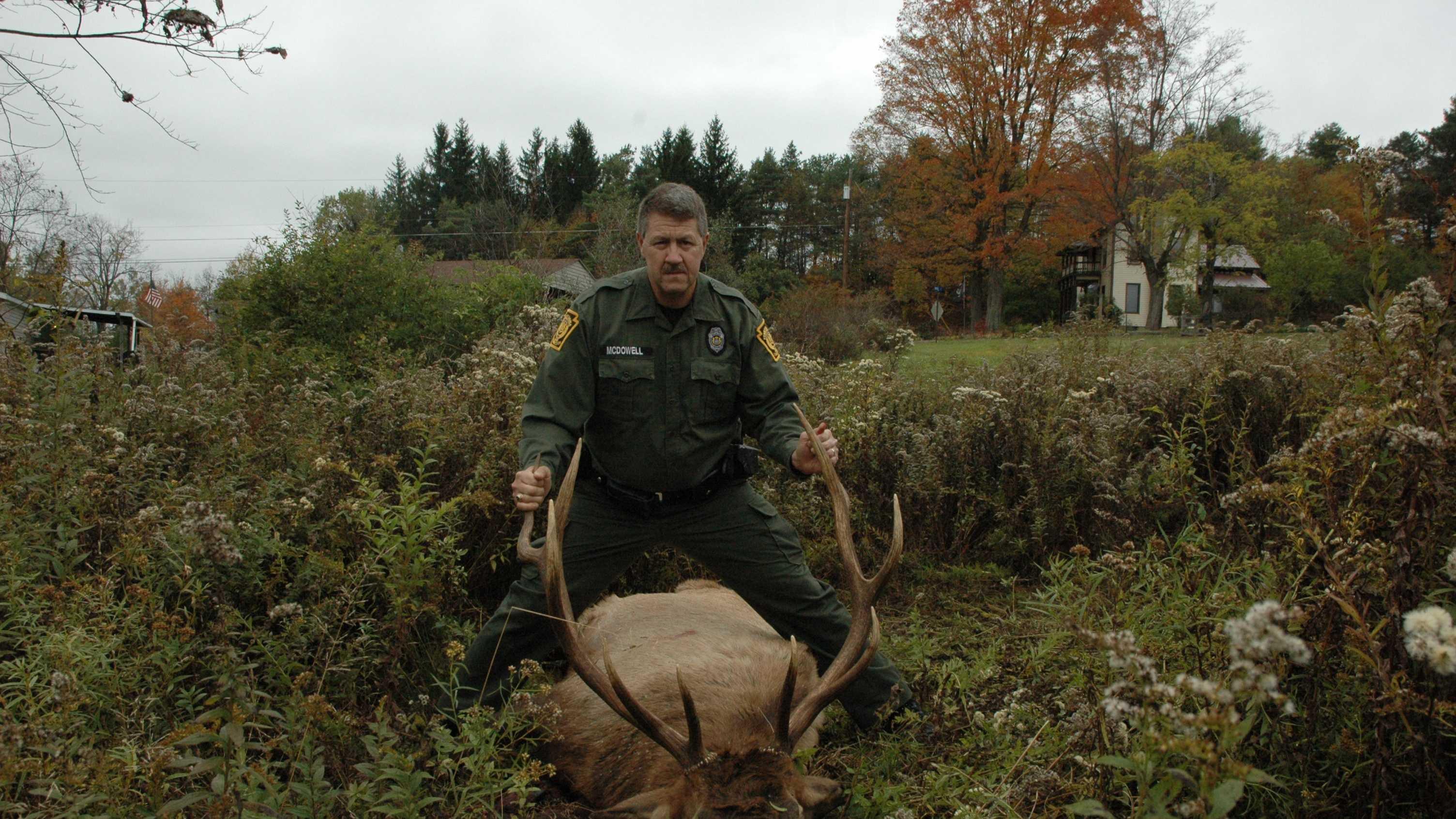 elk shot in Elk County