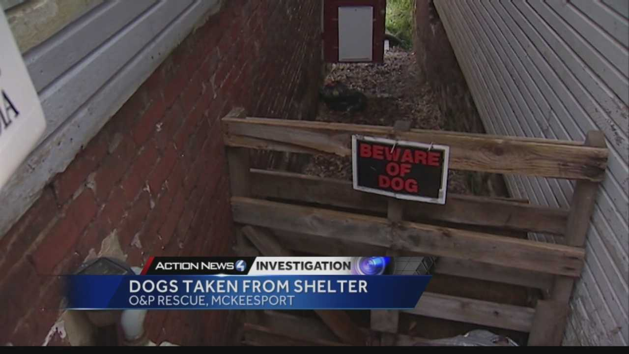 img-Owners of McKeesport dog rescue facing more charges