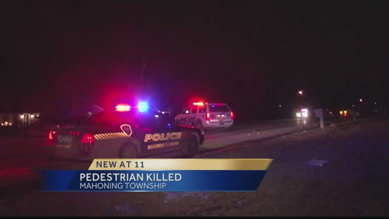 Pedestrian killed in Mahoning Township