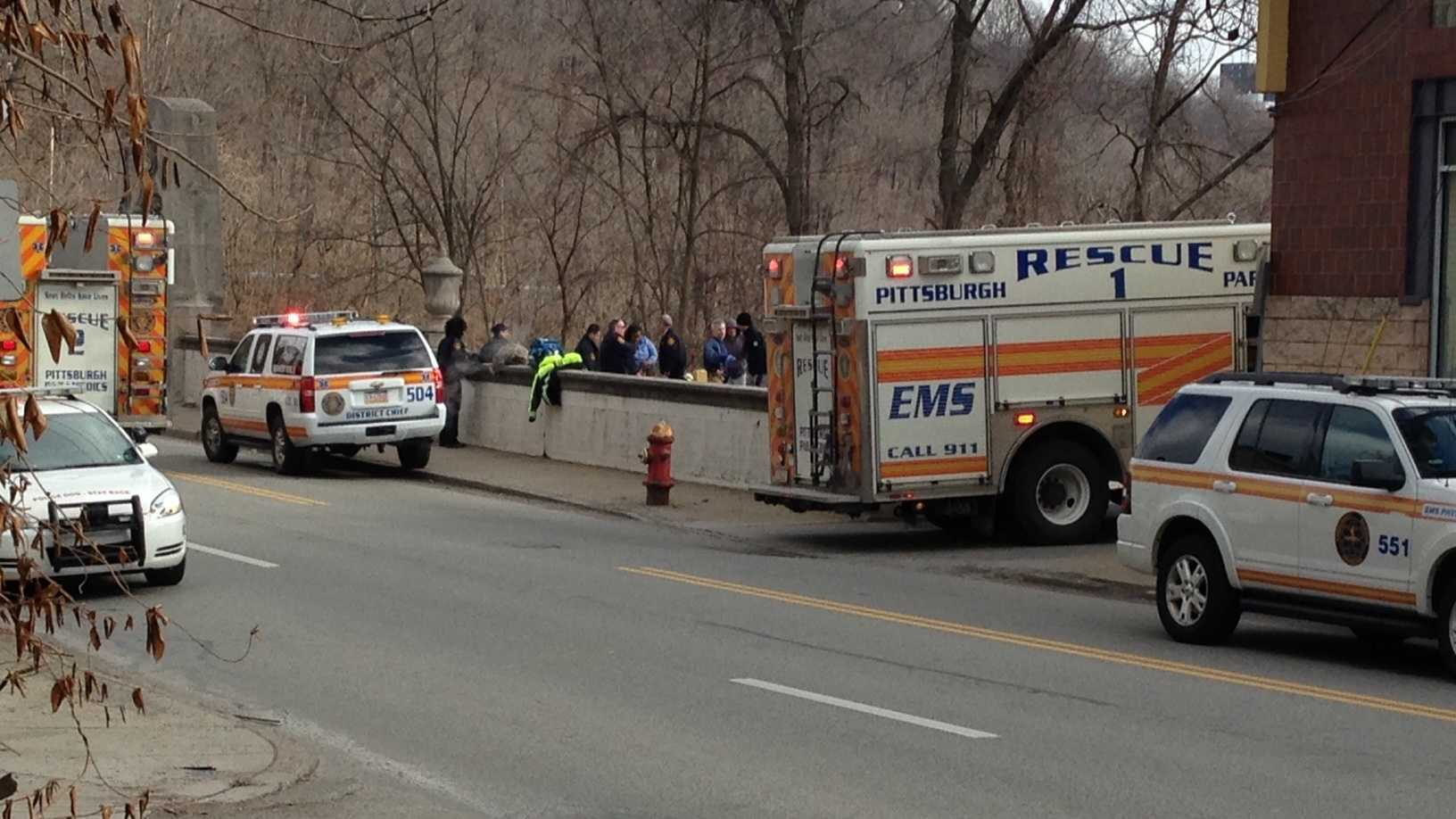 Greenfield Bridge rescue