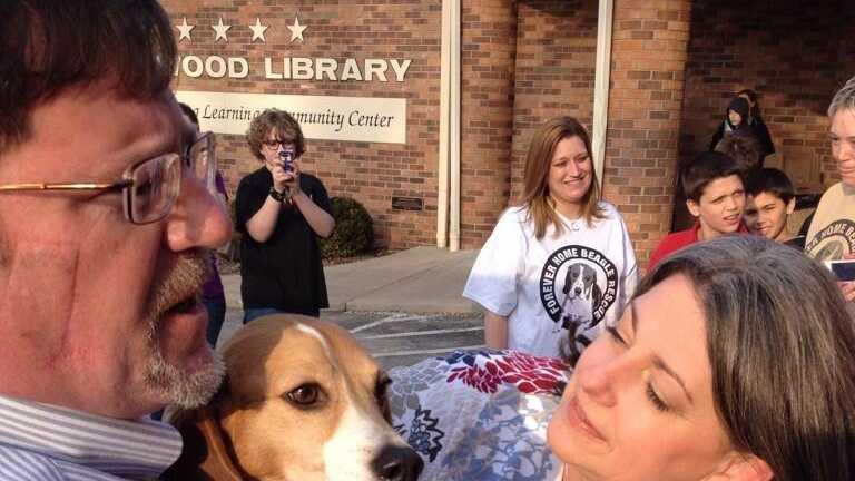 Sassy beagle reunion