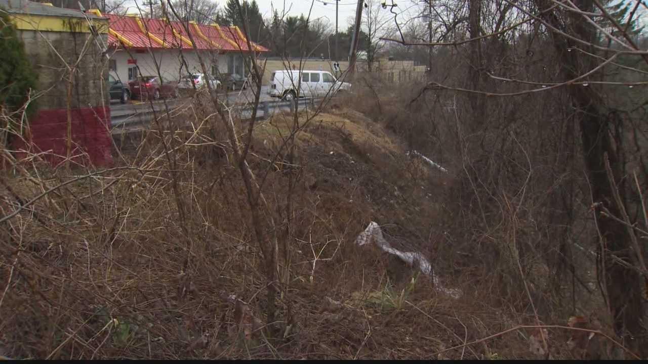Penn Hills robbery suspect falls