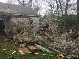A Uniontown woman was sent to the hospital after a tree in her backyard snapped and landed on her legs.