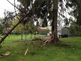 Lightning hit a tree and followed the fence line to a house, causing some damage to the home Wednesday morning in Monroeville.