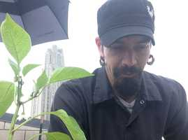 """The executive chef, Kevin Hermann, says people are always surprised at what's happening on the roof of the restaurant. """"They say, 'I had no idea,' when I tell them I have two blueberry bushes, a strawberry patch, beehives,"""" Hermann said."""