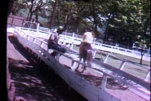 Kennywood pony rides in 1972.