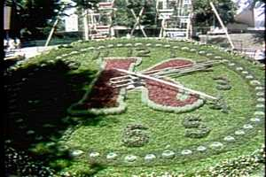 The Garden Clock in the 1960s.