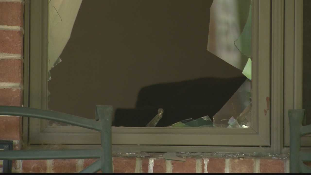 img-Deer smashes into Highland Park home