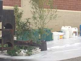 These plants and chemicals were removed from the suspected marijuana grow lab.