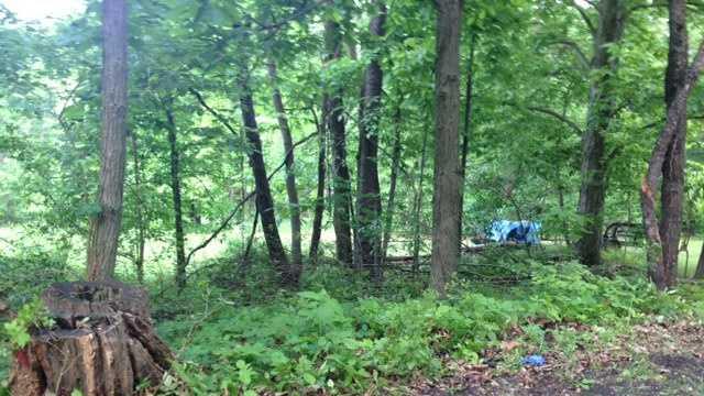 ATV crash location