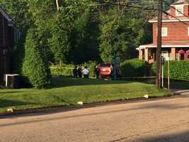 Louann Avenue in Shaler Township