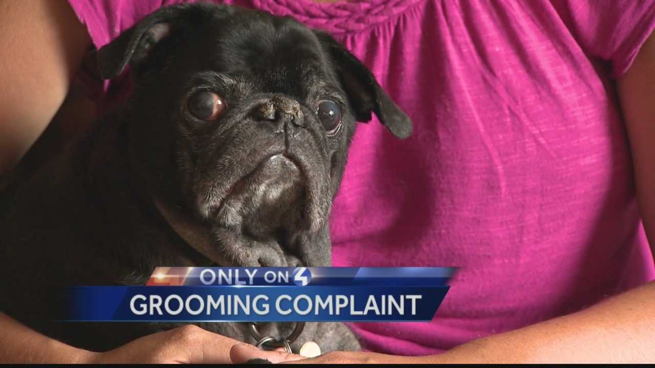Pet owner says dog passed out due to groomer's mistake