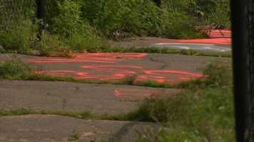 The asphalt service road at the park was also spray-painted with graffiti.