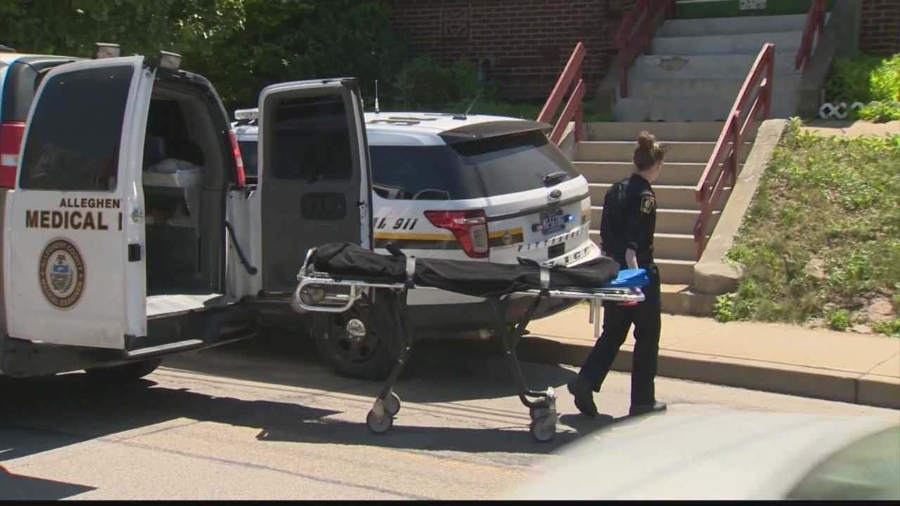 Stabbing victim found dead in Brookline home