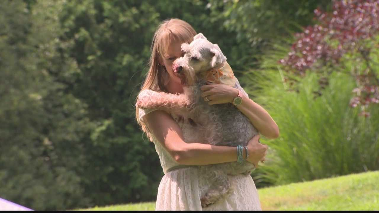 Woman's reunion with dog in Murrysville is huge hit on YouTube