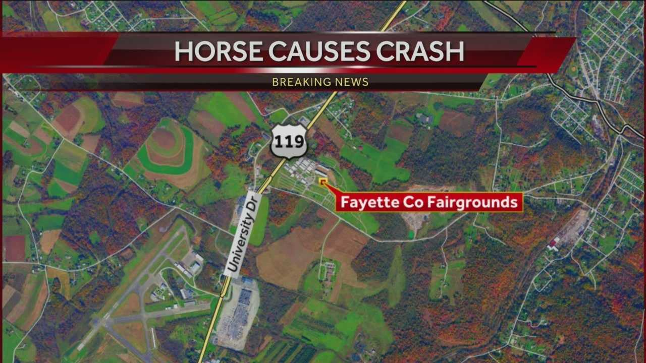 Horse Causes Crash Near Fayette County Fair