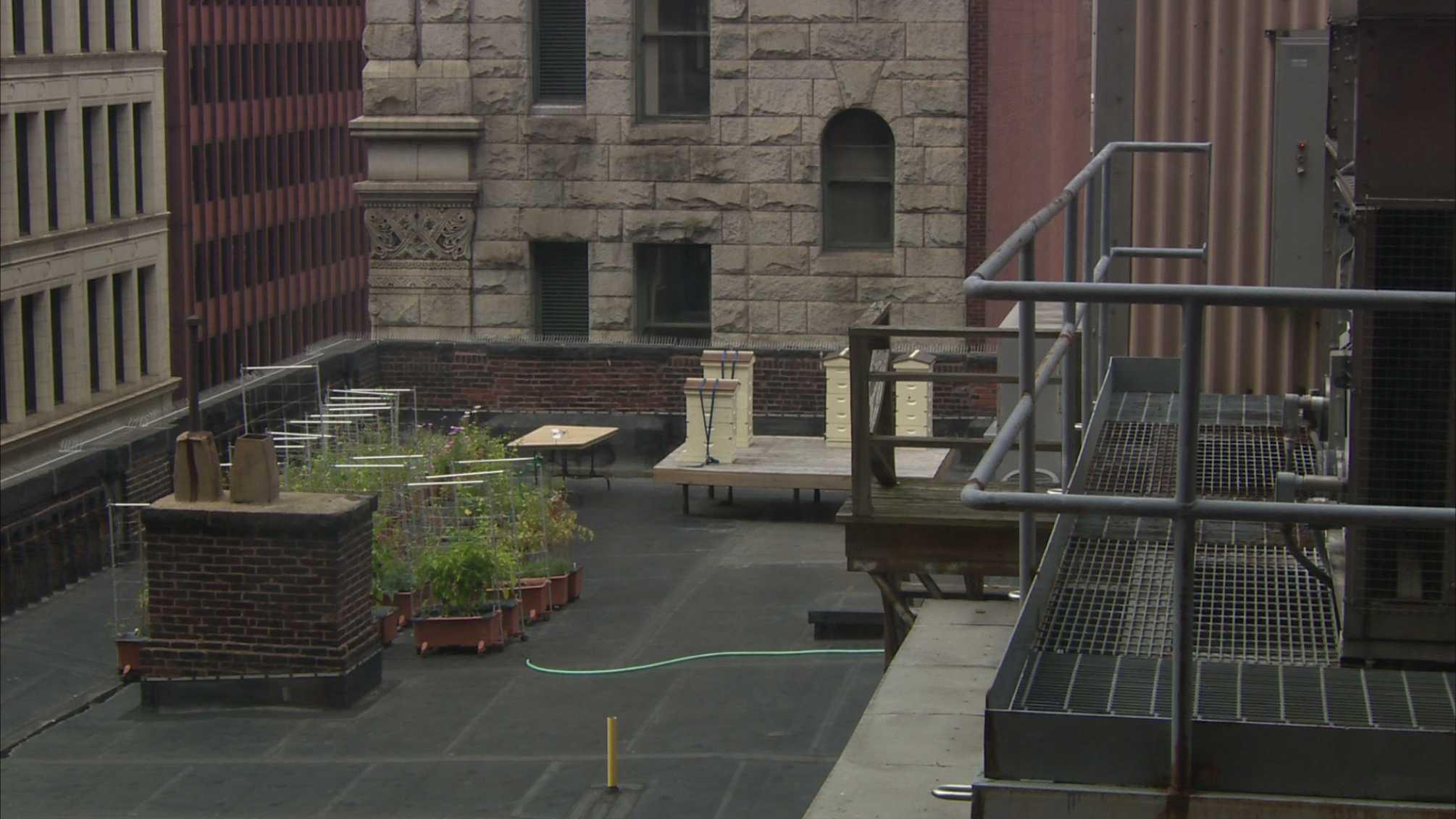 Duquesne Club roof.jpg