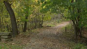 Joggers found the body of Teaira Whitehead in a wooded area near the base of a trail in Riverview Park.