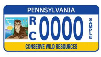 Personalized Wild Resource Conservation Fund registration plates depict the River Otter in an image on the left side of the registration plate.