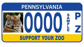 The Pennsylvania Zoological Council registration plate was first issued in April 1996. Proceeds from this plate benefit the Philadelphia Zoo, the Pittsburgh Zoo, the Erie Zoo, the Elmwood Park Zoo in Norristown, the National Aviary in Pittsburgh and the Lehigh Valley Zoo.