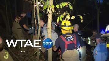 Rescuers pulled a man out of the woods after he fell from a tree stand in Penn Hills.