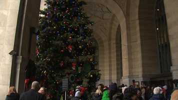 The holiday tree is in place outside the City-County Building.