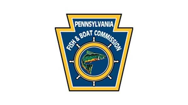 Pa fish game officials confirm rare cancer in bass for Pa boat and fish commission