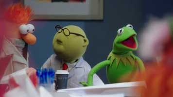"""""""The Muppets"""""""
