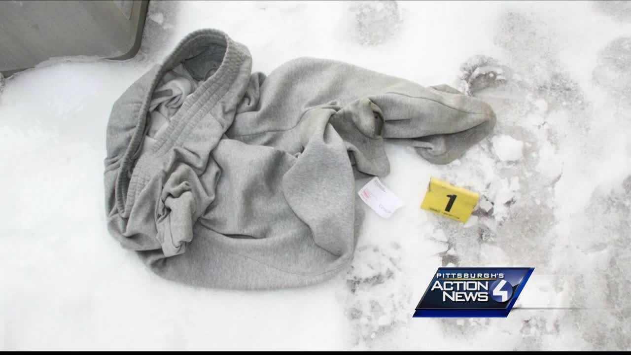 img-Defense tries to poke holes in DNA evidence in Wolfe sisters murders