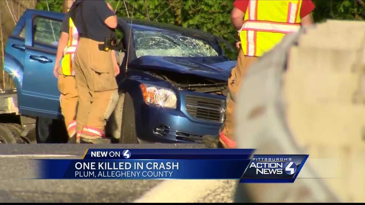 Man killed in Plum Borough crash