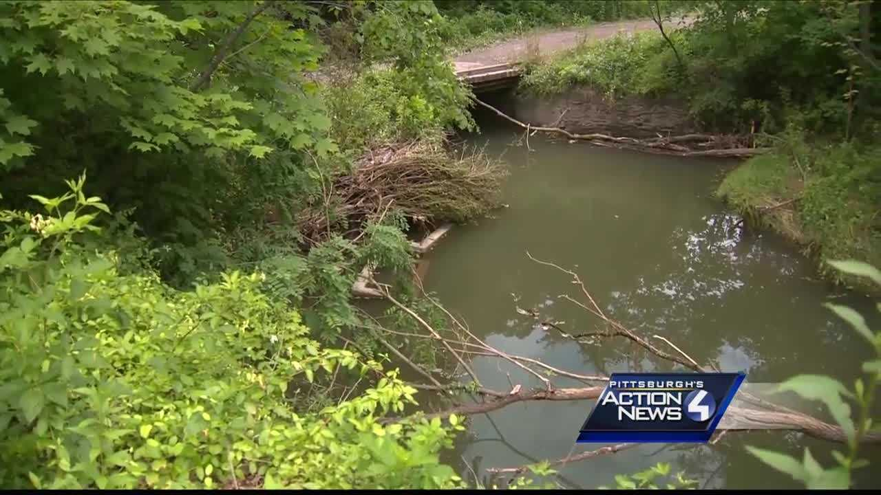 Condition of bridge worries Fayette County homeowner