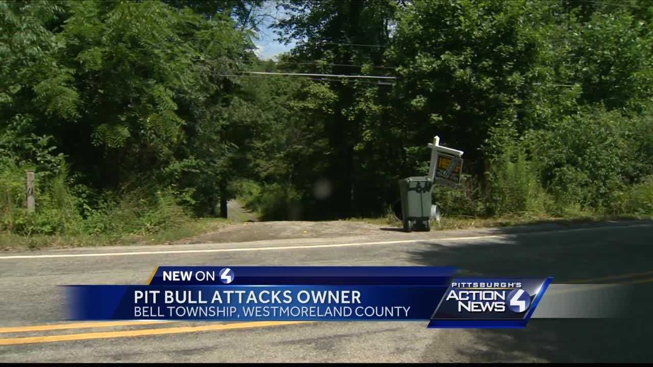 Man flown to hospital after being mauled by pet pit bull
